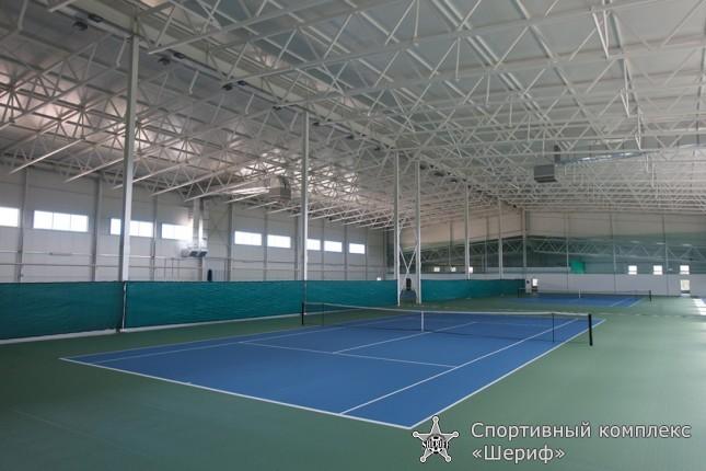 Групповые и индивидуальные тренировки по теннису